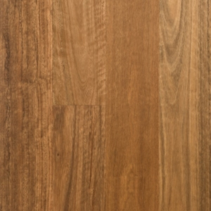 Spotted Gum 14mm Timber Flooring
