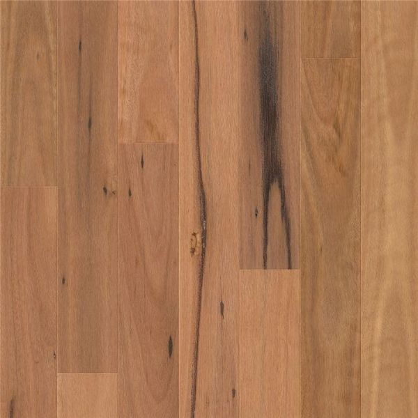 Blackbutt 1 Strip Timber Flooring