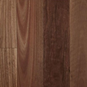 Spotted Gum Smooth Semi-Gloss Timber Flooring