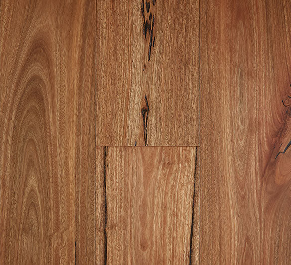 Spotted Gum Rustic Timber Flooring
