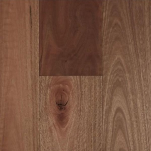 Spotted Gum Smooth Matte Timber Flooring