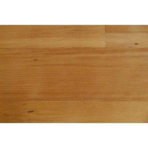 kauri-pine