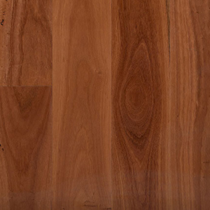 Preference Select Timber - Sydney Blue Gum