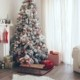 Christmas tree and wood floor