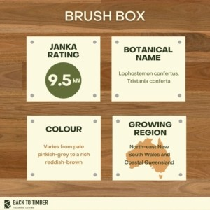 Brush Box